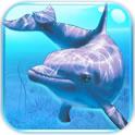 海底世界:3D冒险